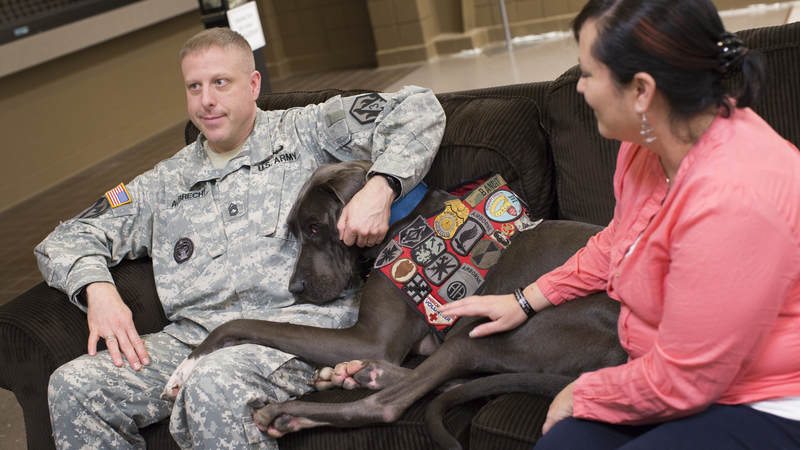 Bandit visits with a military family.